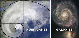 Art - Golden ratio Hurricane and Galaxy